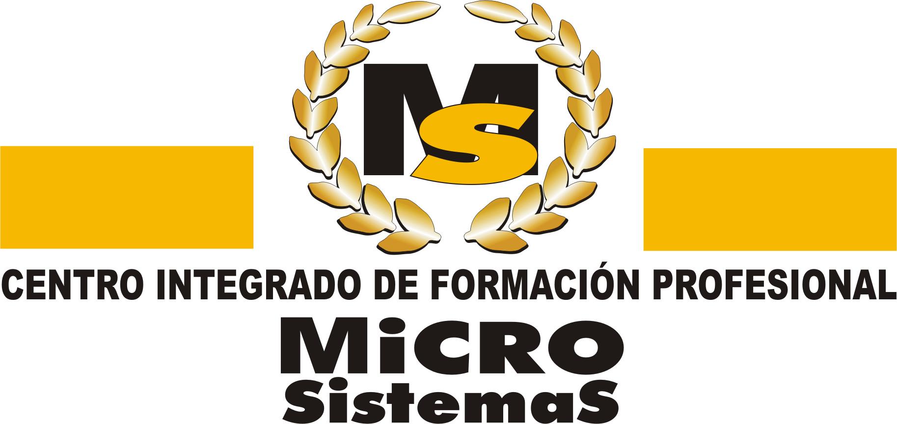 Diseño web en Lanzarote - Weblanz - Microsistemas